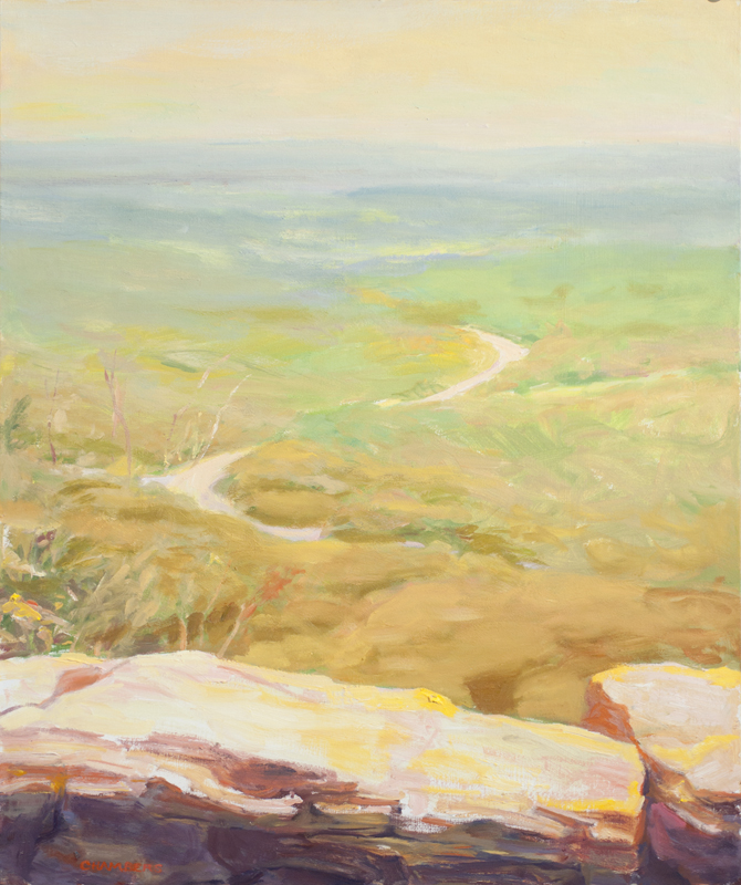 Morning Shenandoah Valley, Appalachian Trail at Bears Den, 24x18in e